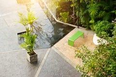 Palm tree in concrete pot decorative on stone floor in public garden Stock Image