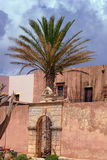 Palm tree in the courtyard of an Orthodox monastery Royalty Free Stock Images
