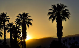 Palm Tree Covered Desert Mountain Ridge Sunset. As the hot sunny blue sky day gives way to sunset yellows and grays the day comes to a close with the sun setting stock photos