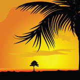 Palm and tree in dsert illustration Royalty Free Stock Photos