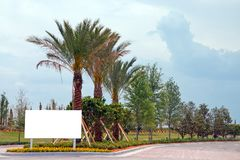 Palm Tree Entrance. Entrance driveway with blank sign ready for customized copy Royalty Free Stock Images