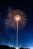 Palm Tree Firework Royalty Free Stock Photo