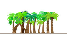 Palm tree, forest, jungle isolated in caricature style, set on a white background. Vector illustration. Trees are summer sun tropical beach, a natural theme Royalty Free Stock Photos
