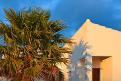 Palm tree in front of a house at the Algarve, Portugal Royalty Free Stock Photography