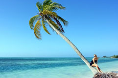 Palm tree and girl Royalty Free Stock Image