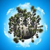Palm tree globe Royalty Free Stock Images