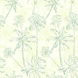 Palm tree green seamless pattern over  Stock Photos