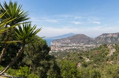 Palm tree with the Gulf of Naples and Vesuvius in the background.  stock images