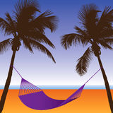 A Palm Tree and Hammock Beach Scene Stock Image