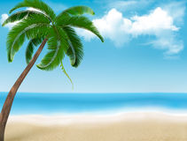Palm tree holiday background. Royalty Free Stock Photos