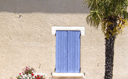 Palm tree, house with shutter. Royalty Free Stock Photo