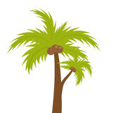 Palm tree. icon flat, cartoon style. Summer, beach concept isolated on white background. Vector illustration, clip-art. Stock Photo