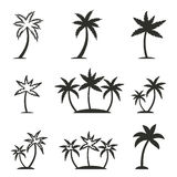 Palm tree icon set. Palm tree vector icons set. Black illustration isolated on white background for graphic and web design Stock Illustration