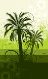 Palm tree illustration Stock Image