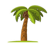 Palm tree illustration Royalty Free Stock Images