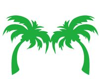 Palm tree. Illustration of a exotic palm tree Stock Images