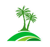 Palm tree image Royalty Free Stock Images