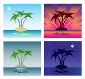 Palm tree and island Stock Image
