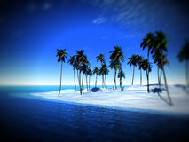 Palm Tree Island Stock Photography