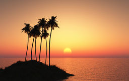 Palm tree island against a sunset sky Royalty Free Stock Images