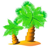 Palm tree island Royalty Free Stock Photo