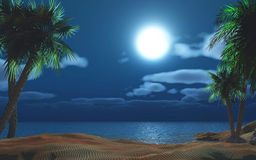 Palm tree island at night Stock Photos