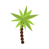 Palm tree isolated vector. Royalty Free Stock Photography