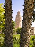 Palm tree and Koutoubia mosque. Big palm trees in background Koutoubia mosque in Marrakesh in Marocco Royalty Free Stock Photography