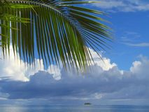 Palm tree leaf and cloudscape. Palm tree leaf in front of tropical cloudscape over the sea Royalty Free Stock Image