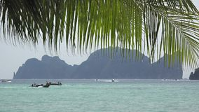 Palm tree leaf over long-tail boat on Andaman sea near Phi Phi island, Thailand. UHD 4K stock video footage
