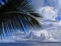 Palm tree leaf, sea and cloudscape Royalty Free Stock Photography