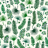 Palm tree leaf seamless pattern background. Palm tree leaf textile pattern. Stock Image