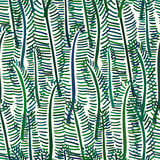 Palm tree leaf seamless pattern Stock Photos