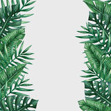 Palm tree leaves background template. Royalty Free Stock Photos
