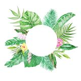 Palm tree leaves round frame. Watercolor colorful concept of the jungle for the design of invitations, greeting cards. Palm tree leaves round frame. Watercolor Royalty Free Illustration