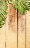 Palm tree leaves and sand on wood background Stock Photography