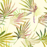 Palm tree leaves. Vector seamless pattern. Royalty Free Stock Photos