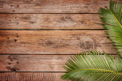 Palm tree leaves on vintage planked wood background royalty free stock photo