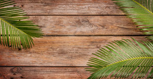 Palm tree leaves on vintage planked wood background stock photo