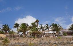 Palm tree-lined resort Stock Photos