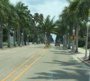 Palm tree lined road. Driving down a palm tree lined road Royalty Free Stock Photography