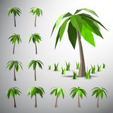 Palm tree on lonely island Stock Photos