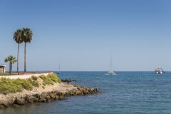Palm tree and luxury yachts in Cote d`Azur, France Royalty Free Stock Photos