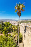 Palm tree, and Malaga city in the background view from Gibralfaro Castle. Spain. Stock Photos