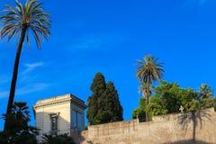 Palm tree near old italian buildings. royalty free stock photo