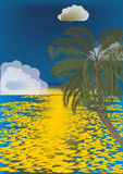 Palm tree near sea under blue sky Royalty Free Stock Photos