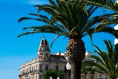 Palm tree with and old building in the background. Tarragona, Spain stock photo