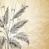 Palm tree over bamboo forest. Royalty Free Stock Images