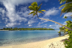 Palm tree over lagoon, Aitutaki,The Cook Islands Royalty Free Stock Photo