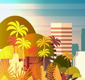 Palm Tree Park Over City Buildings Skyscrapers Background Summer Cityscape On Sunset View. Vector Illustration Stock Image
